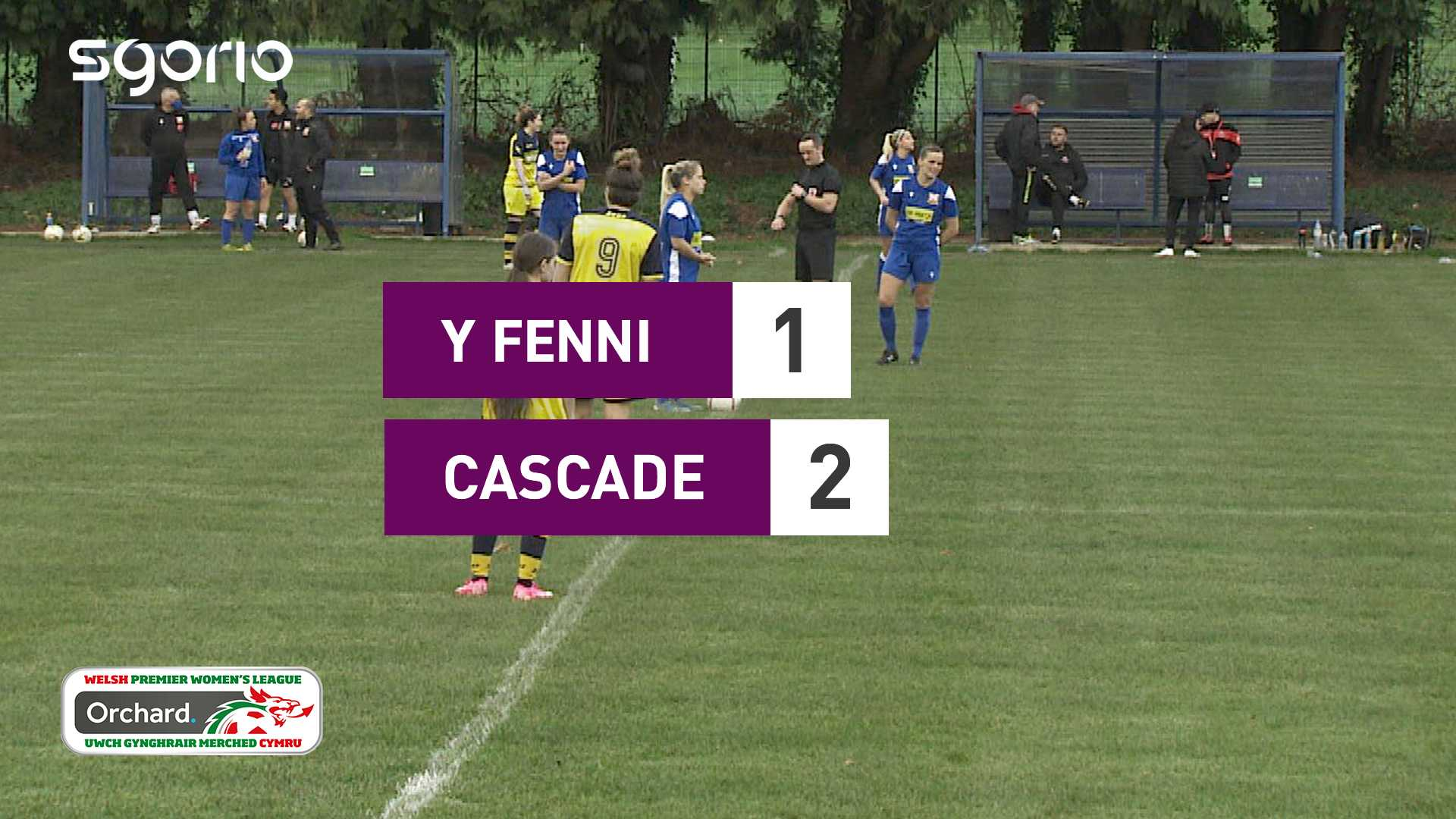 Y Fenni 1-2 Cascade
